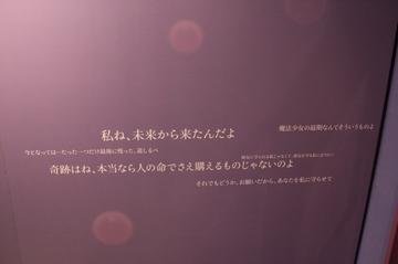 20111227156.jpg